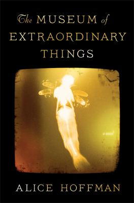 Book Cover for The Museum of Extraordinary Things