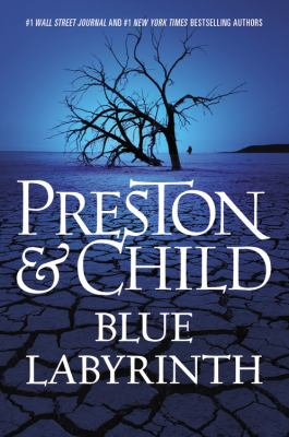 Book Cover for Blue Labyrinth